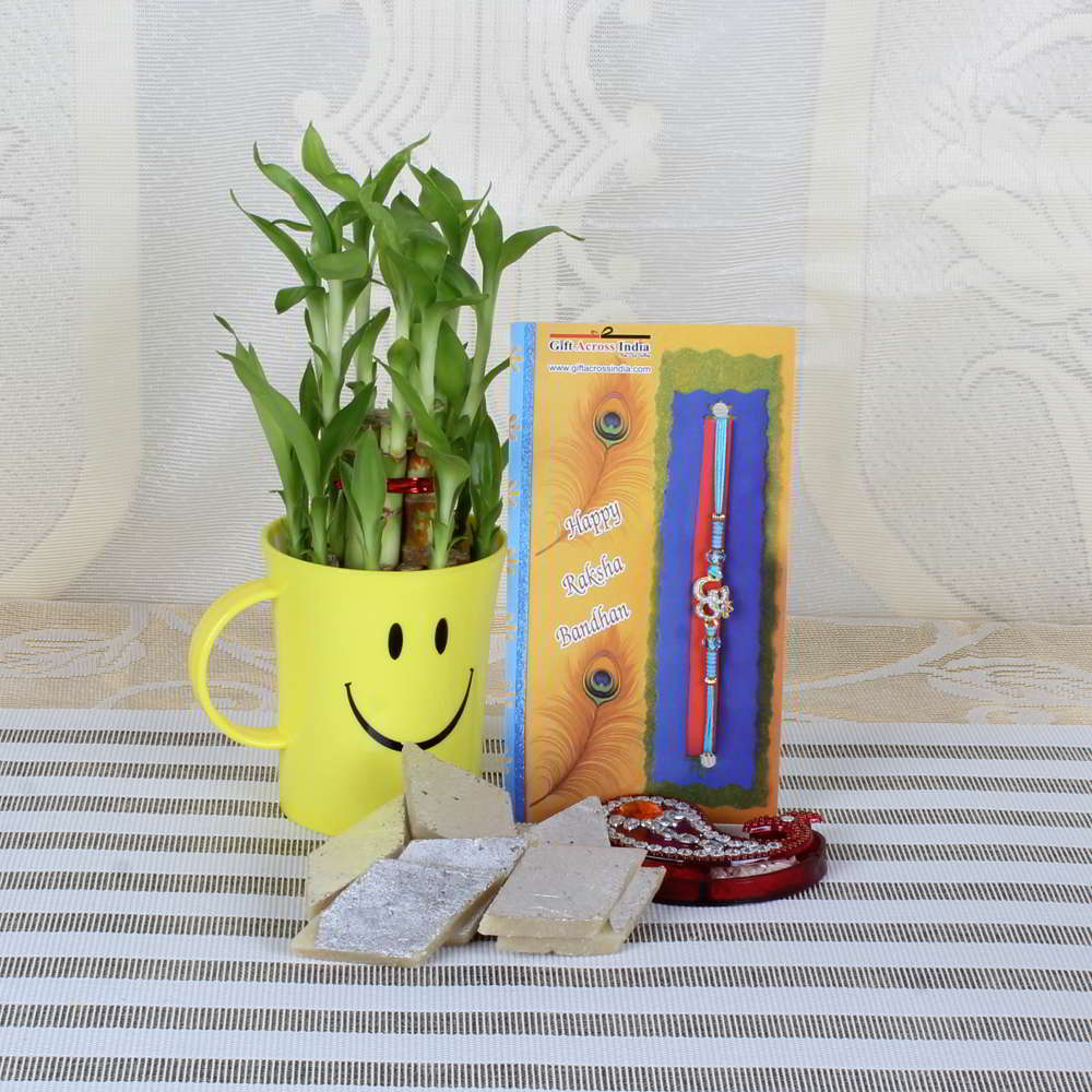 Om Rakhi with Sweets and Good Luck Plant