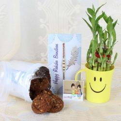 Choco-chip Cookies with Rakhi and Good Luck Wishes