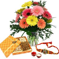 Colorful Gerberas and Assorted Dry Fruits with Rakhi